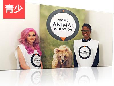 【外教精品课】World Animal Protection | 世界动物保护协会