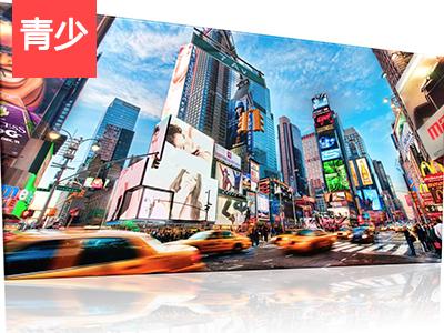 【外教精品课】New York   我是小旅行家系列:纽约篇