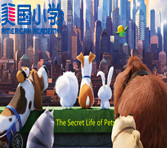 【哈沃美国小学动画演播室】the secret of life of pets- characters