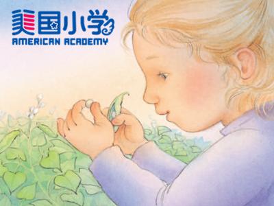 【明星外教精品绘本公开课--初级】The Garden :美丽的花园